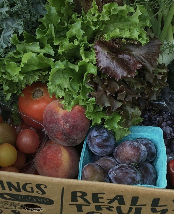Yellowbird Foodshed - Where Your Food Should Come From